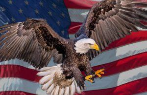 O Pesadelo Americano